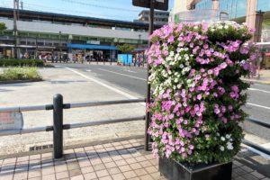 亀有駅前のフラワーメリーゴーランド2