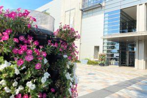 水元総合スポーツセンターフラワーメリーゴーランド2