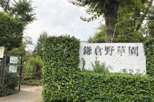 鎌倉野草園入り口