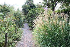 鎌倉野草園の園内1