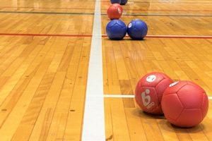 ボッチャ交流大会)ボール