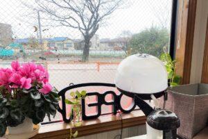 「どっくwどっぐ」窓から見える鎌倉公園